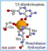 ATHEIS dan LOGIKA Amino-acid