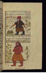 makhajaib7