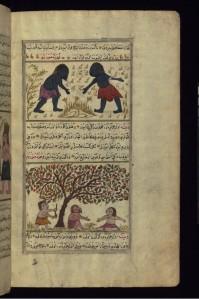 makhajaib8
